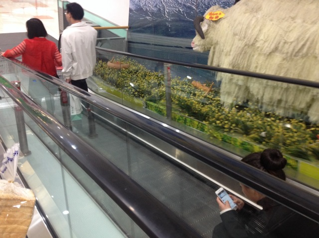 ...ride the moving walkway of course.